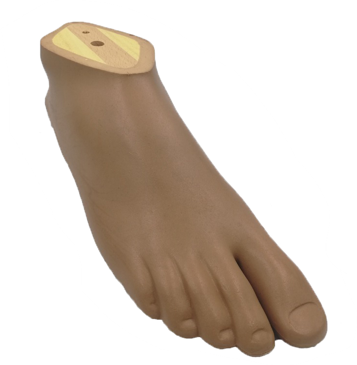 Dynamic Foot, R, Size: 22, Brown Color