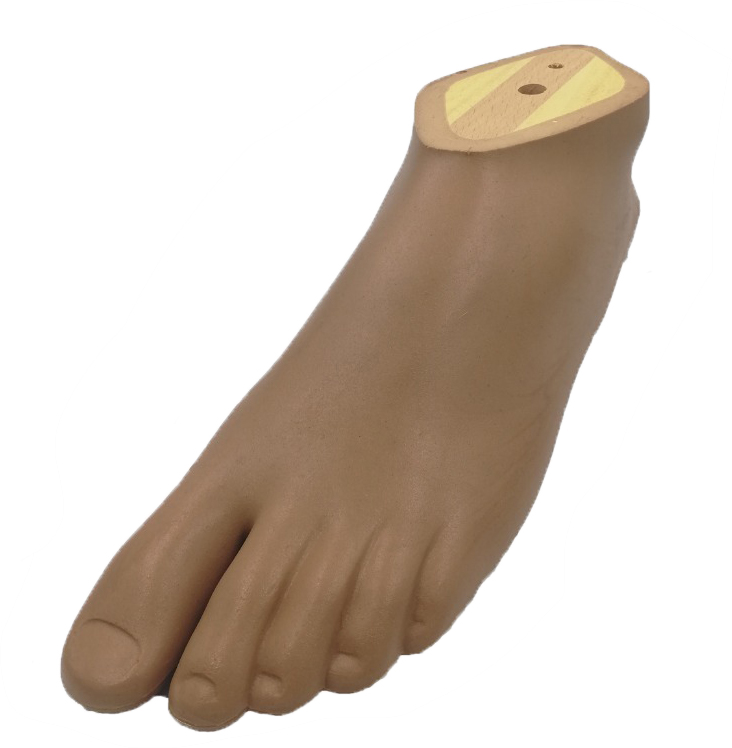 Dynamic Foot, Left, Size: 24, Brown Color